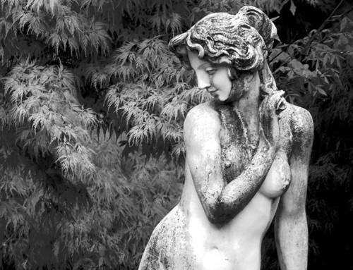 La Millenaria tradizione dell'uso delle piante medicinali nell'antica Grecia