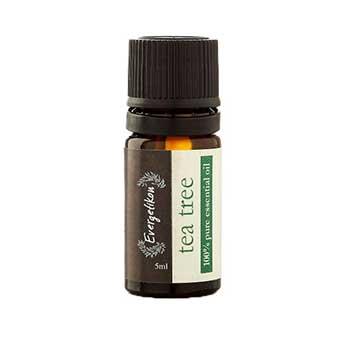 Olio essenziale di TeaTree